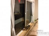 内窓で断熱効果アップが期待できます。