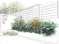 しっかりとした枝葉のギルドエッジとレンギョウのナチュラルセット